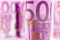 Bevolking beetgenomen met invoering euro